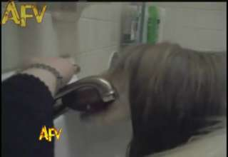 Shaggy Dog Drinks from the Sink view on ebaumsworld.com tube online.
