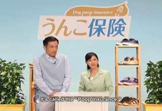 Dog Poop Insurance view on ebaumsworld.com tube online.