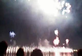 Thug Life Dog Fireworks Video