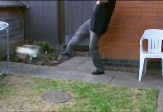 Cat Gets Kicked Super Slow Mo view on ebaumsworld.com tube online.
