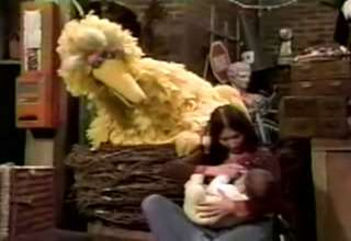 Big Bird Is A Pervert view on ebaumsworld.com tube online.