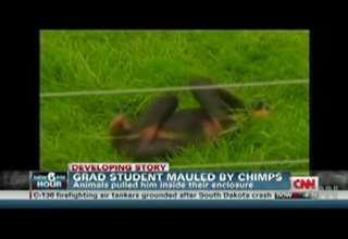Grad  student  mauled  by  Two  Chimps! view on ebaumsworld.com tube online.