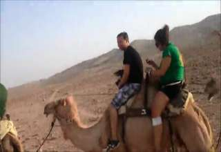Fat girl falls off a donkey! view on ebaumsworld.com tube online.