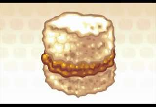 Nugget in a Biscuit view on ebaumsworld.com tube online.