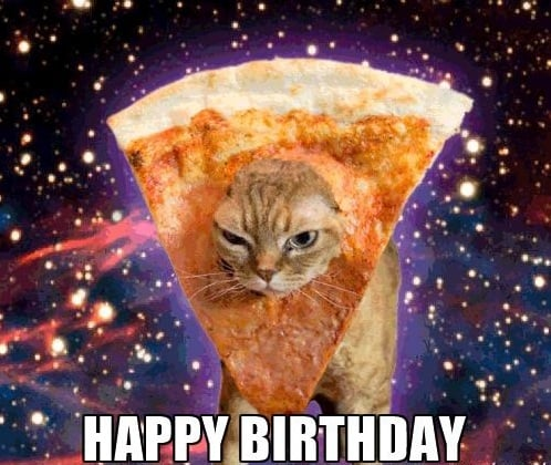 21 Cat Birthday Memes That Are Absolutely Purrrrfect , Funny