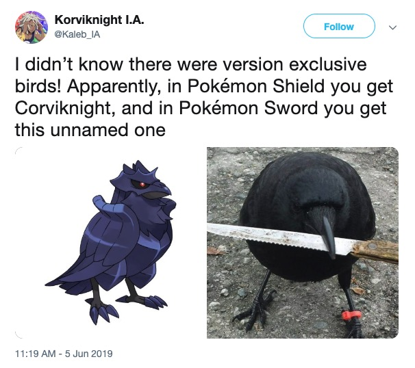 Pokemon Sword And Shield Memes For Those Who Have To Collect Them