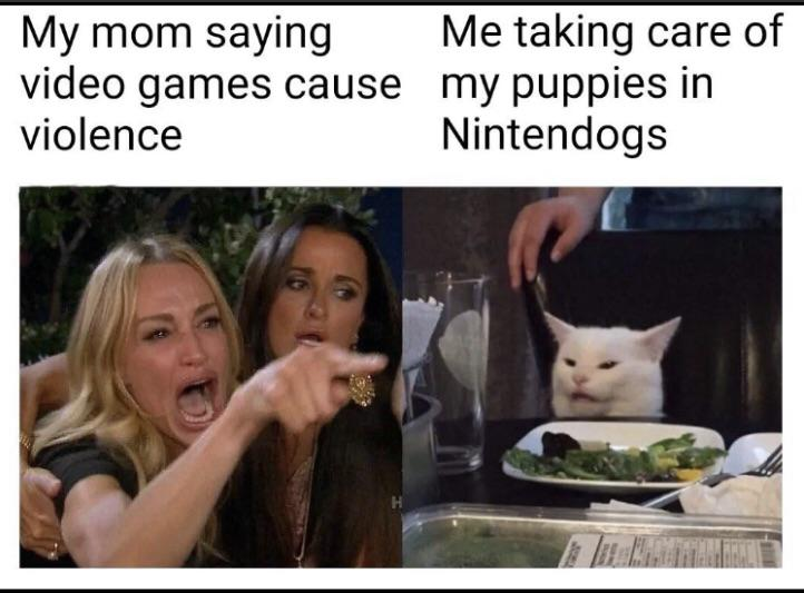 60 Best Woman Yelling At A Cat Memes That Have Taken Over