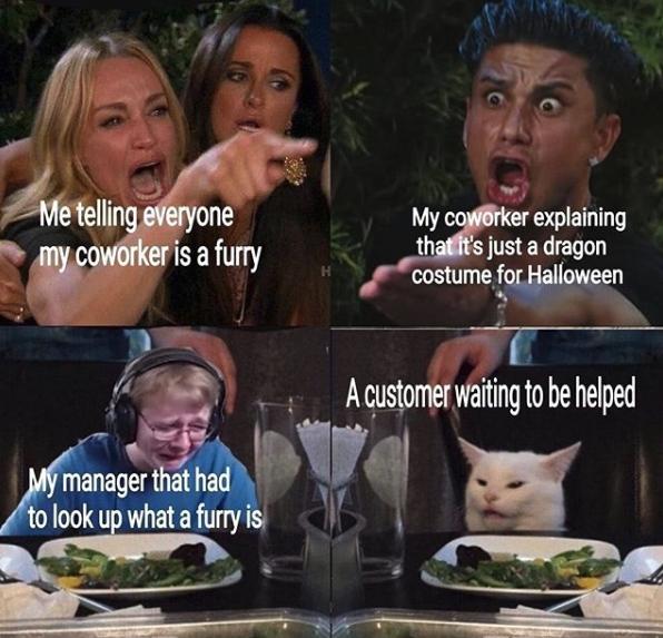 two girls yelling at cat meme