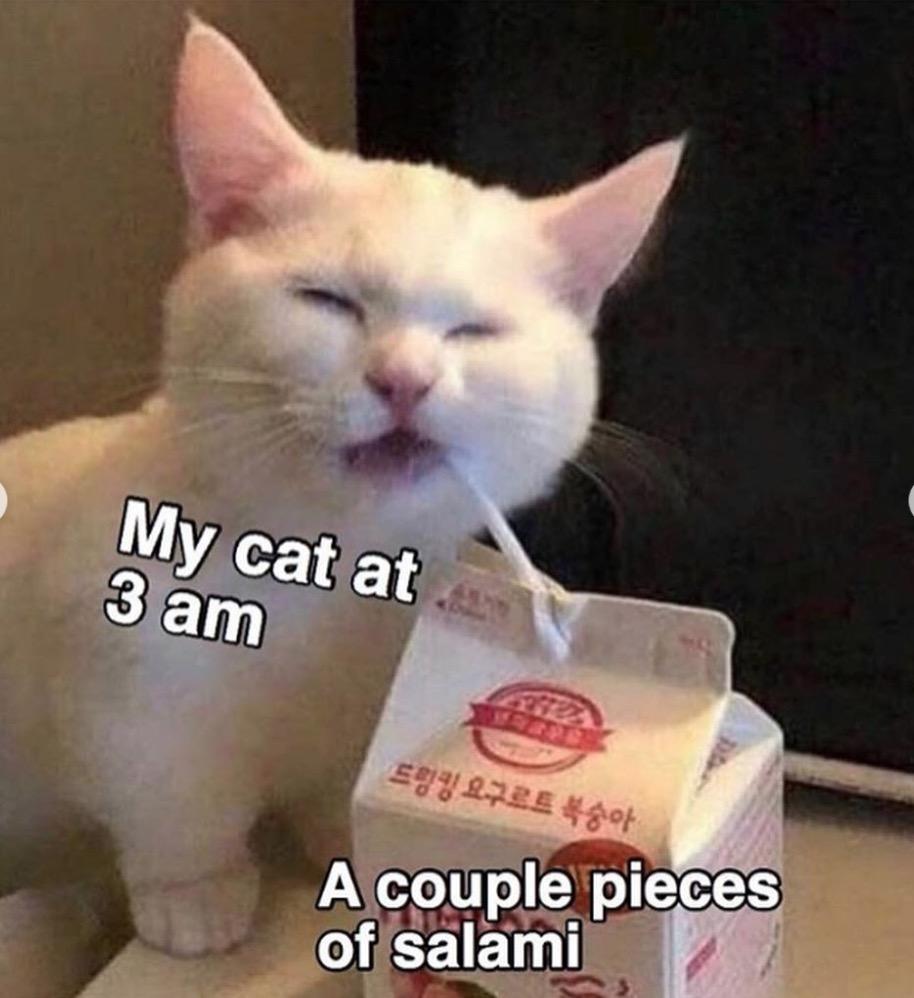 The Best \u0027Cats Can Have a Little Salami\u0027 Memes That Were