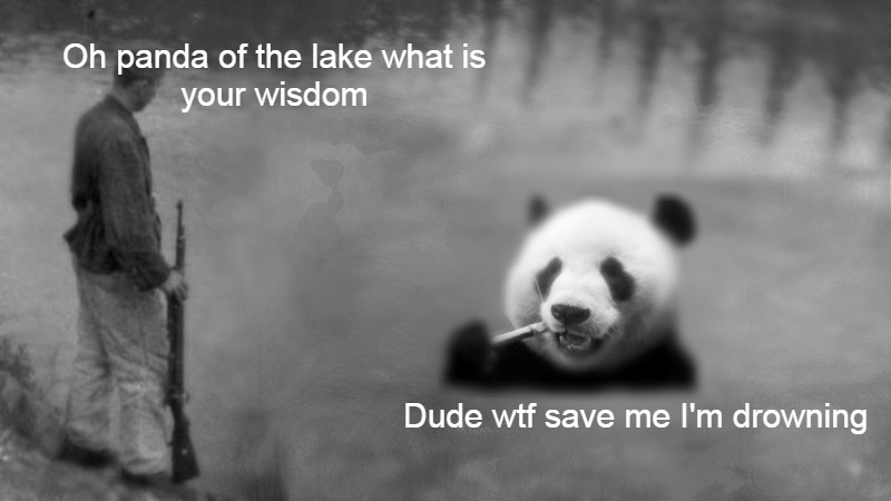 Oh panda of the lake what is your wisdom Dude wtf save me I'm drowning