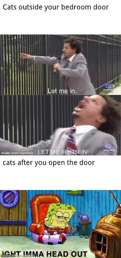 let me in meme gate eric andre - Cats outside your bedroom door Let me in. Let Me Minnalliin! cats after you open the door Ightimma Head Out spongebob squarepants