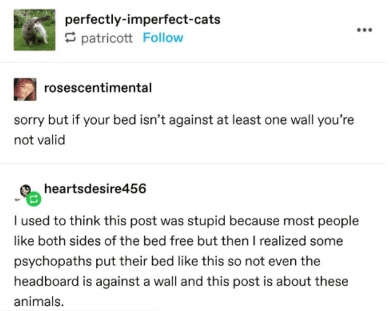Tumblr Thread Analyzes Optimal Bed Placement Funny Gallery