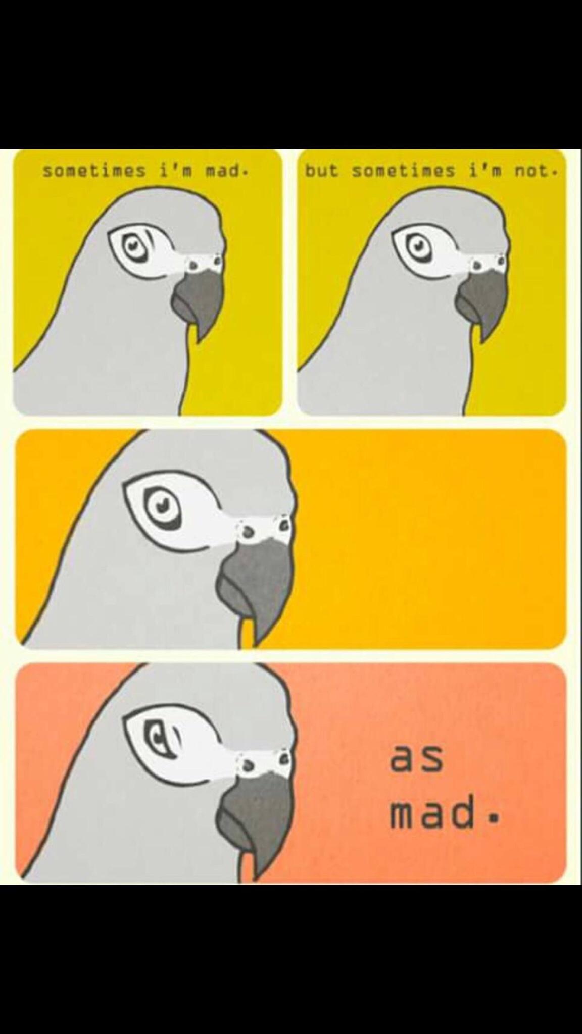 38 Funny AF Memes And More - Gallery | eBaums World