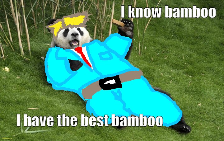 I have the best bamboo