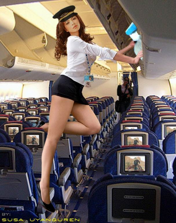 Flight Attendants - Gallery  Ebaums World-9158