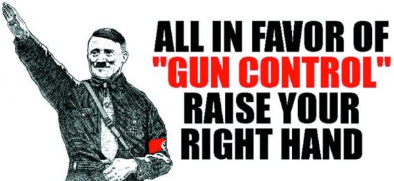 Image result for gun control works