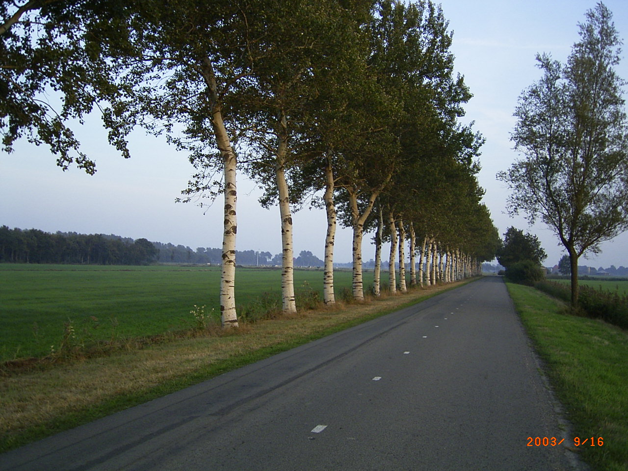 Holland is a flat land and is completely lined up and even nature is showing that discipline