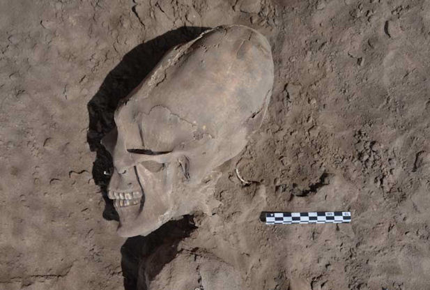 http://www.redorbit.com/news/science/1112754510/alien-like-skulls-unearthed-mexico-122712/