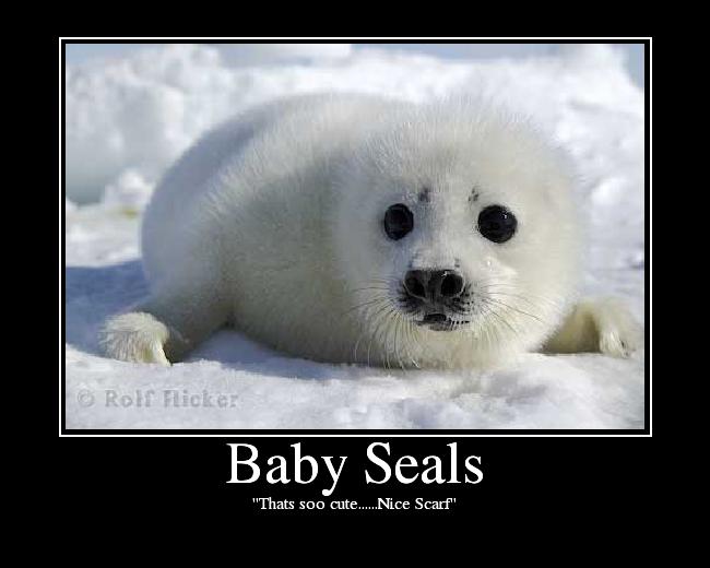 """Thats soo cute......Nice Scarf"""
