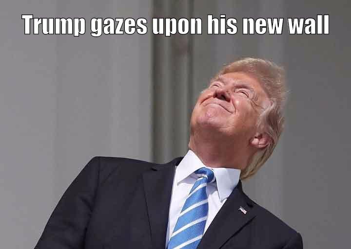 Trump gazes upon his new wall