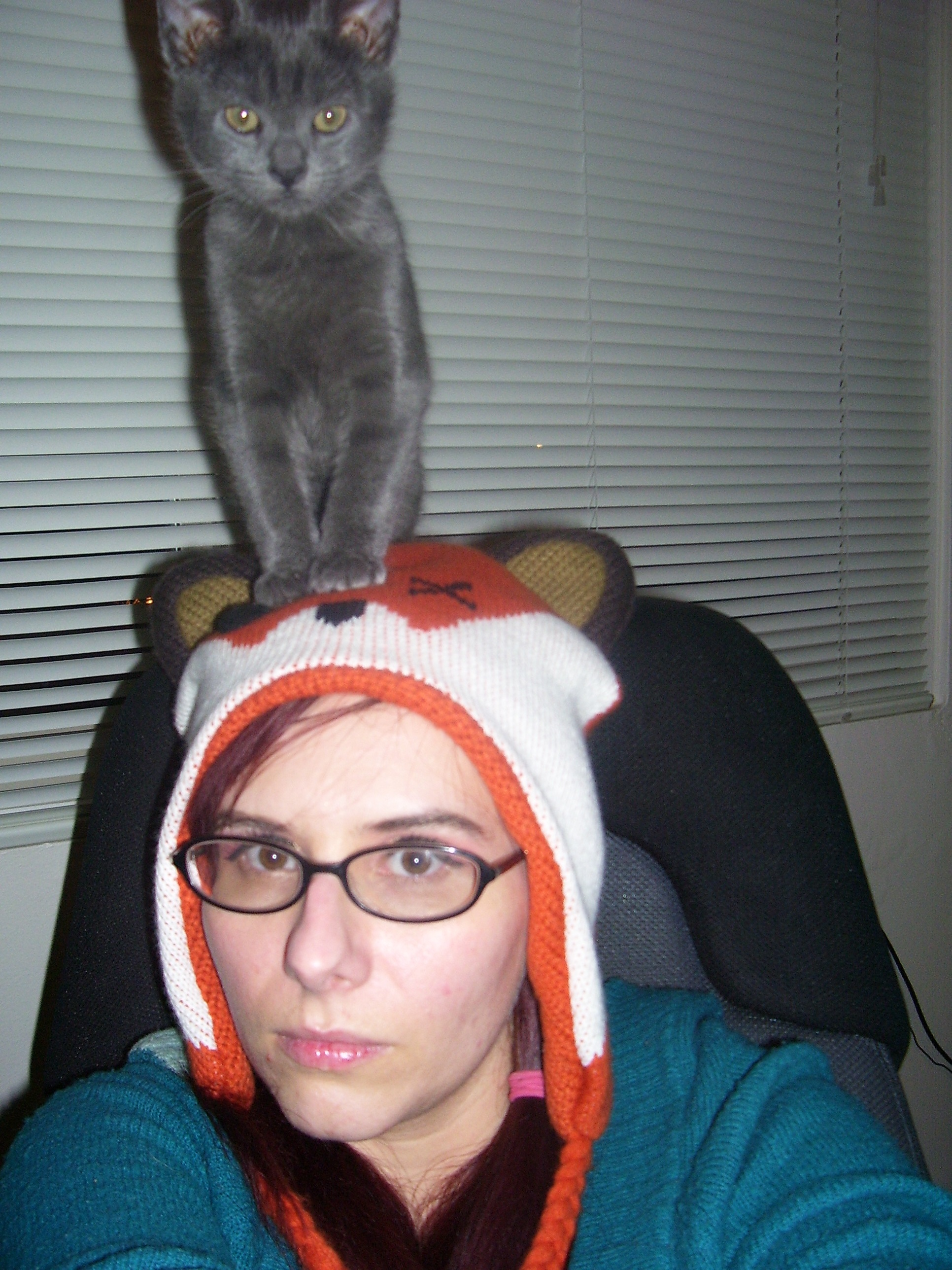 pero the cat on my head he always looks so disaproving .