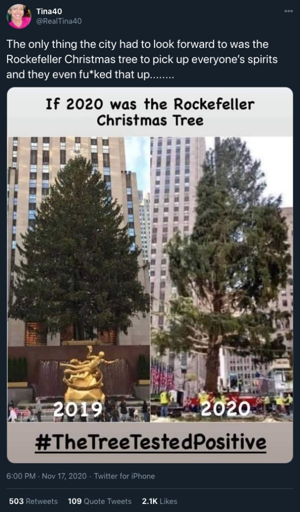 ngsv hz8ogdugm https www ebaumsworld com pictures internet totally roasting the 2020 rockerfeller tree 86455802