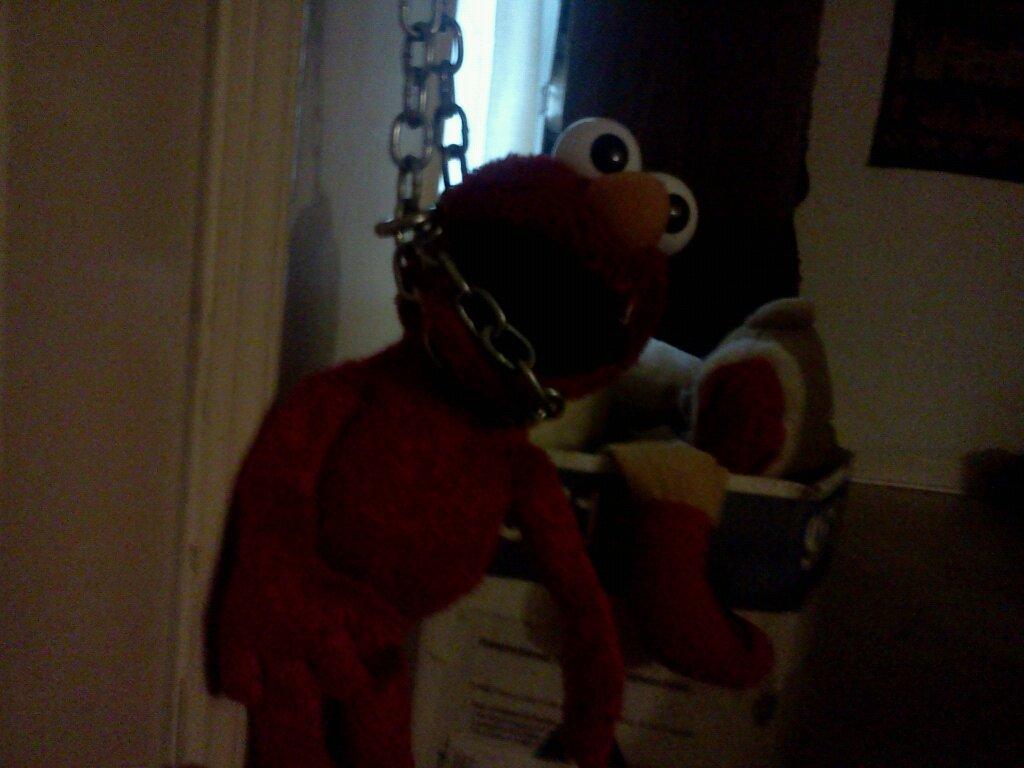 Elmo Dies Picture Ebaums World