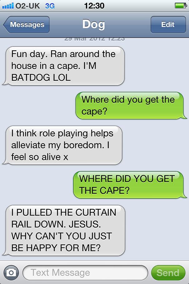 If Man's Best Friend Could Text - Gallery   eBaum's World