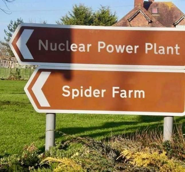 funny pics - monster musume memes - Nuclear Power Plant Spider Farm
