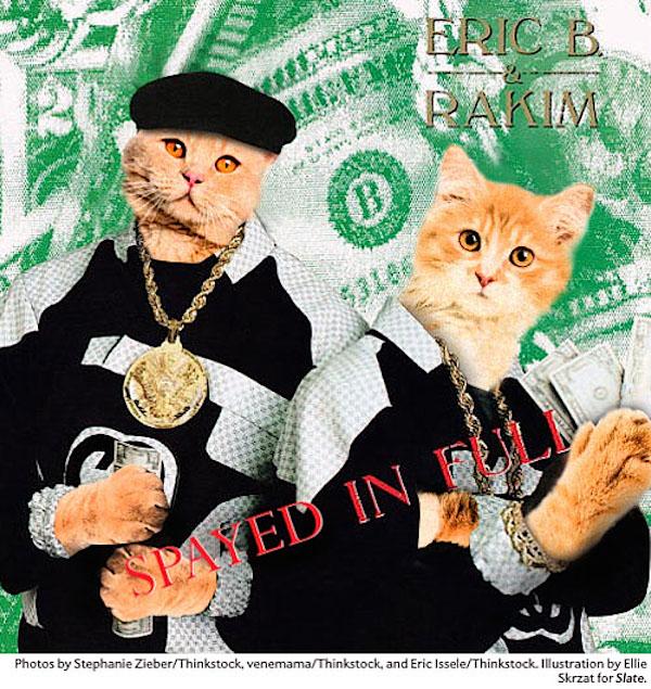Hip Hop Album Covers All Cat Remixed Gallery Ebaums World