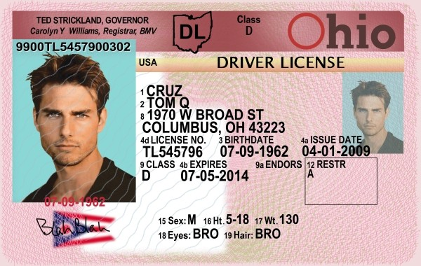Drivers - Ebaum's Random Gallery World Licence