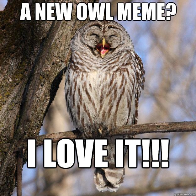 Owl Memes Gallery