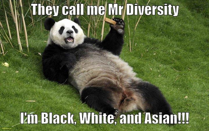 Panda Caption Contest