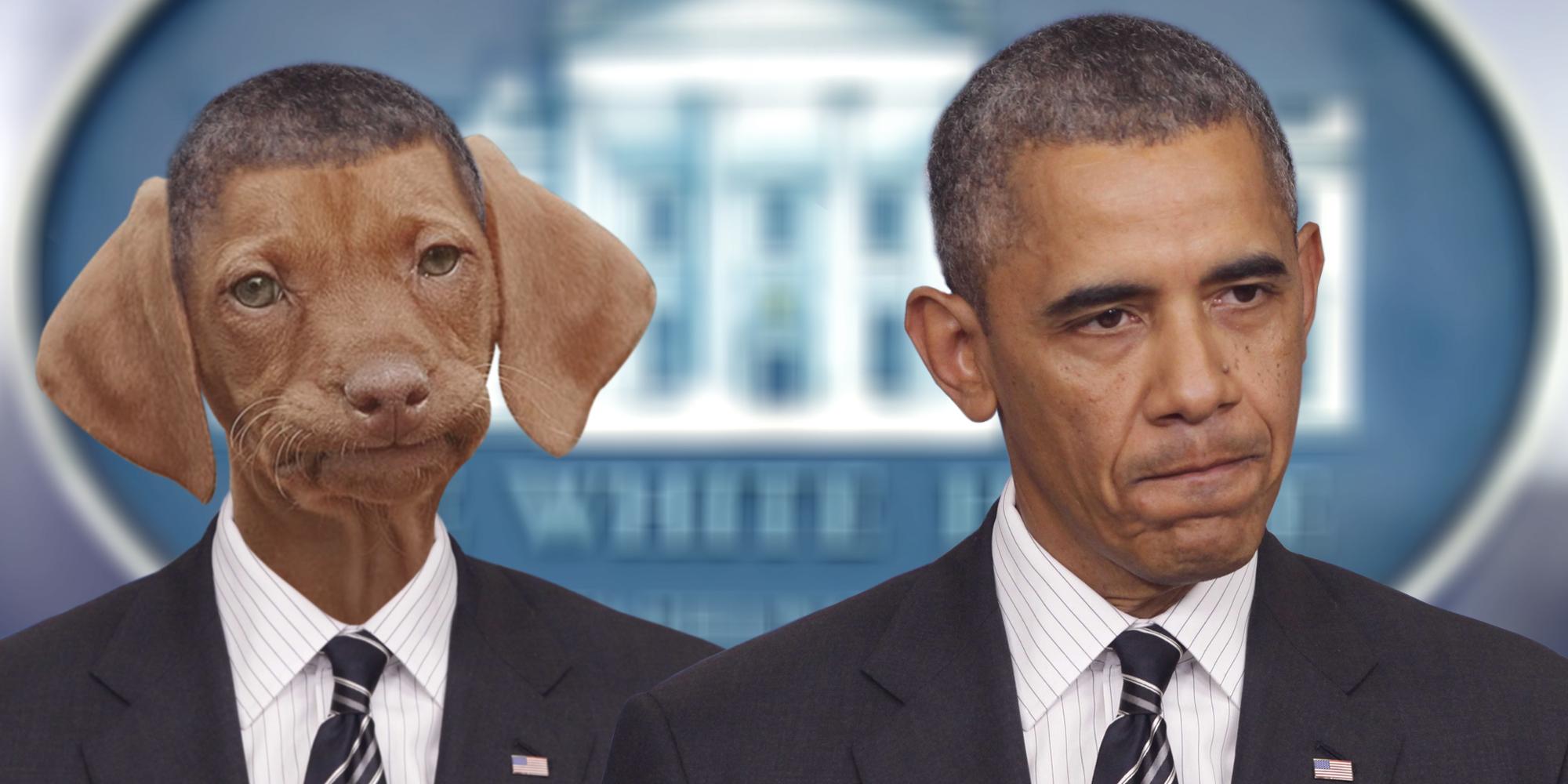 Barack Odoga doesn't approve.