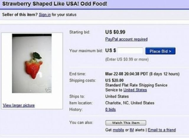 18 Of The Weirdest Things Listed On Ebay Gallery