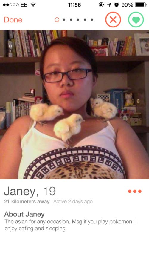 19 Tinder Profiles That Are Perfect - Gallery | eBaum's World