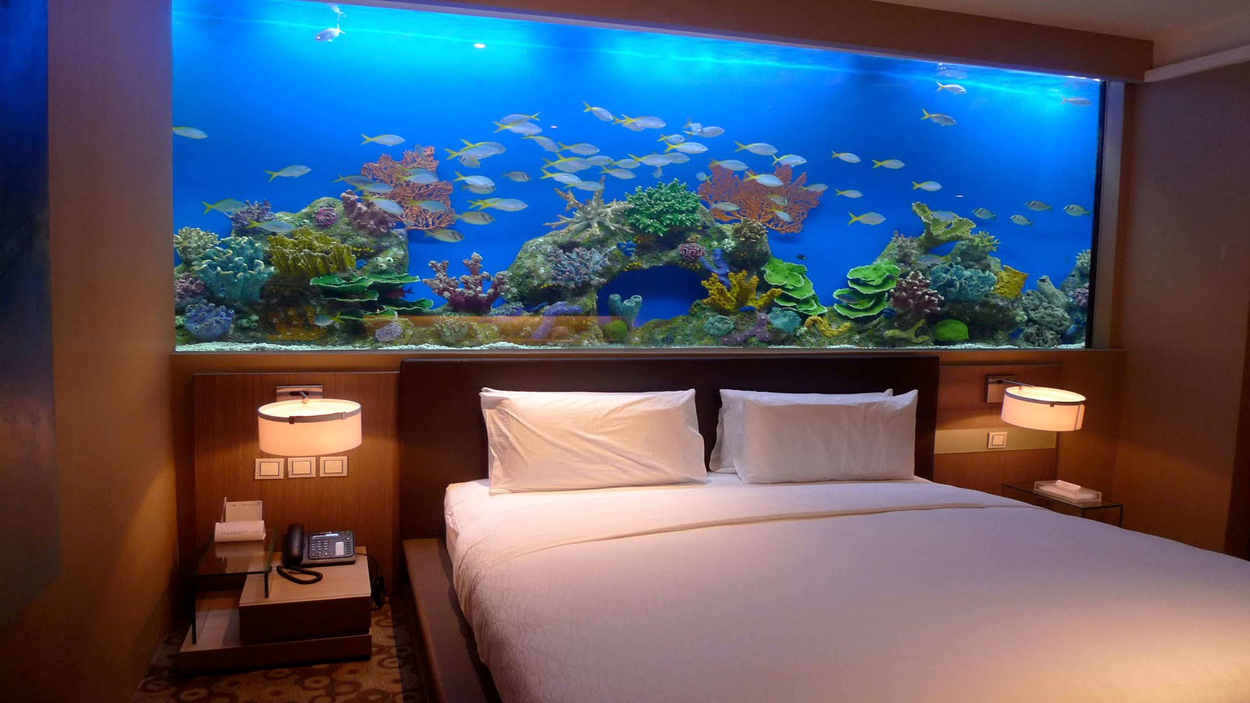 17 Next Level Aquariums That Are Out Of This World Wow Gallery