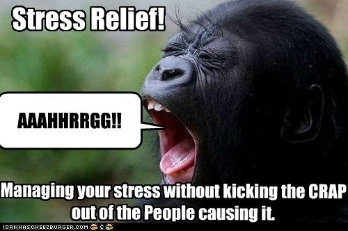 19 Funny Stress Memes Gallery