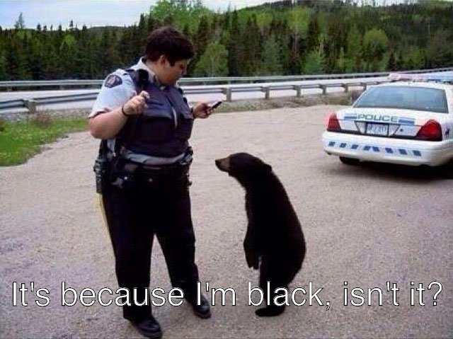 Police discrimination is Grizzly. This situation would be the Polar opposite if he was white.