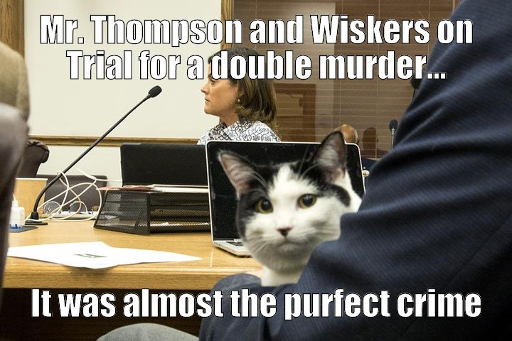 The Purfect Crime