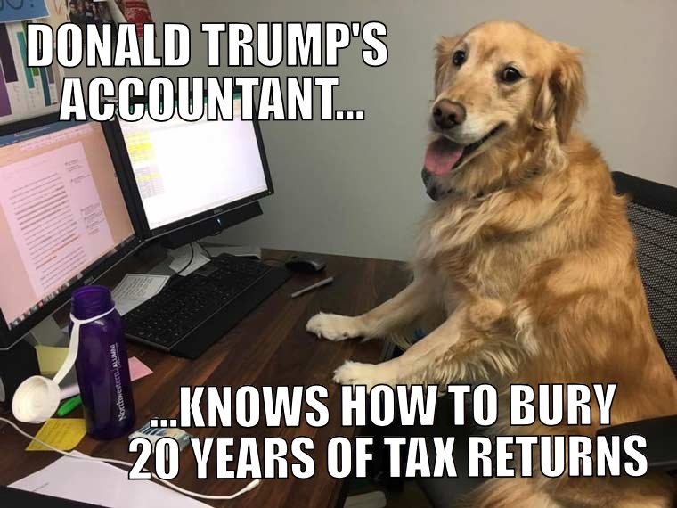 Now we know what happened to all those missing tax returns.