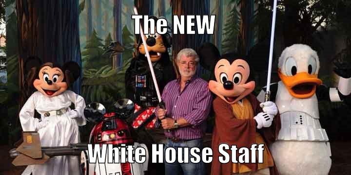 trumps new cabinet