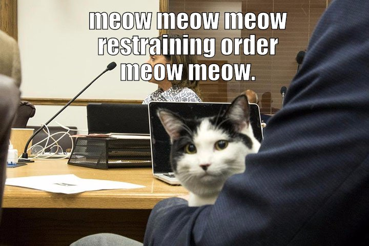I remember on Mr. Roger's Neighborhood how the cat on there would say meow meow over and over with maybe one word mixed in.