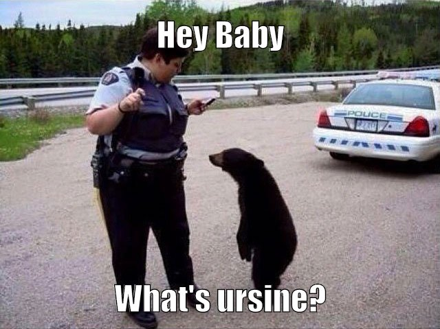 Bear with me here....