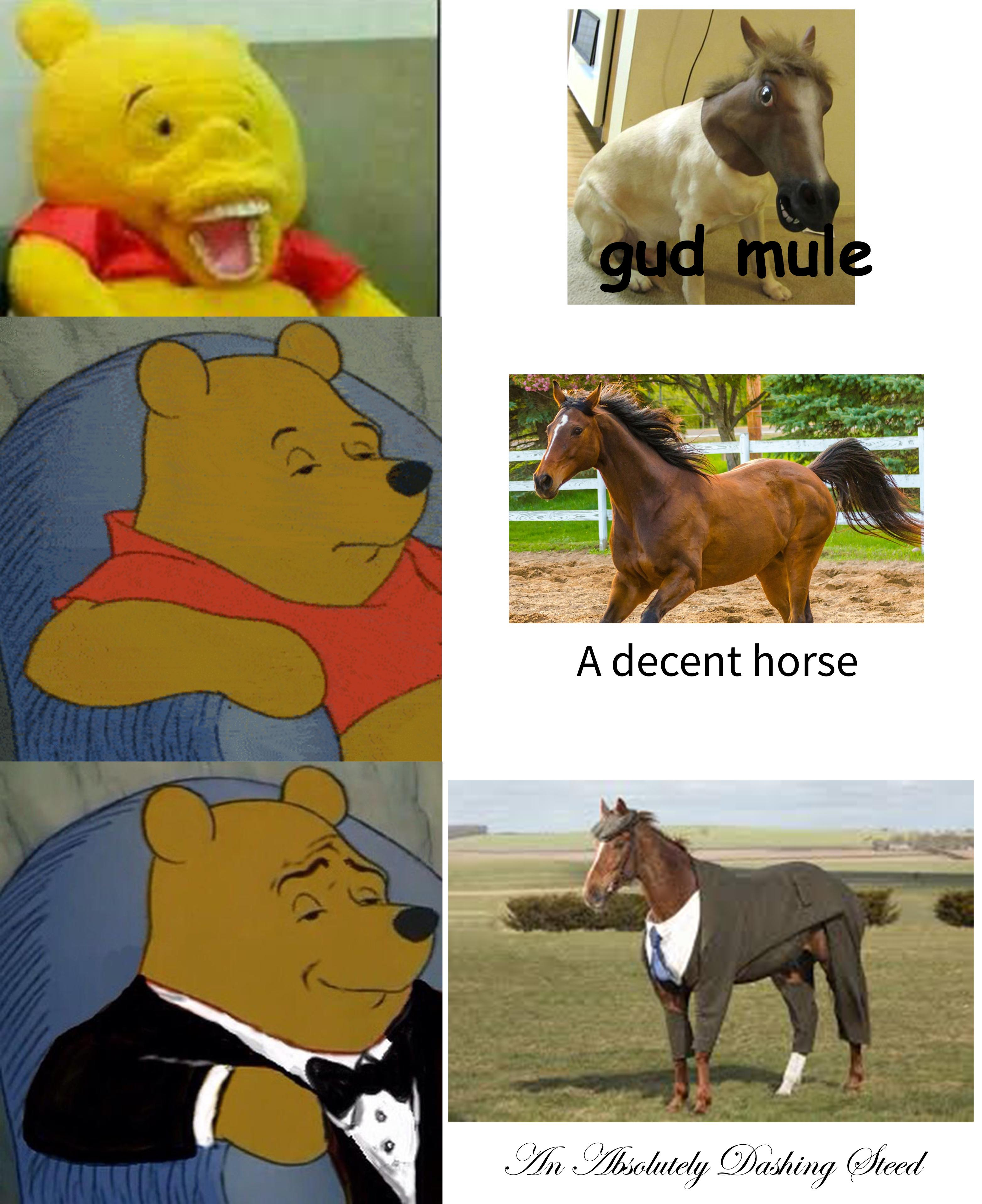 winnie pooh memes