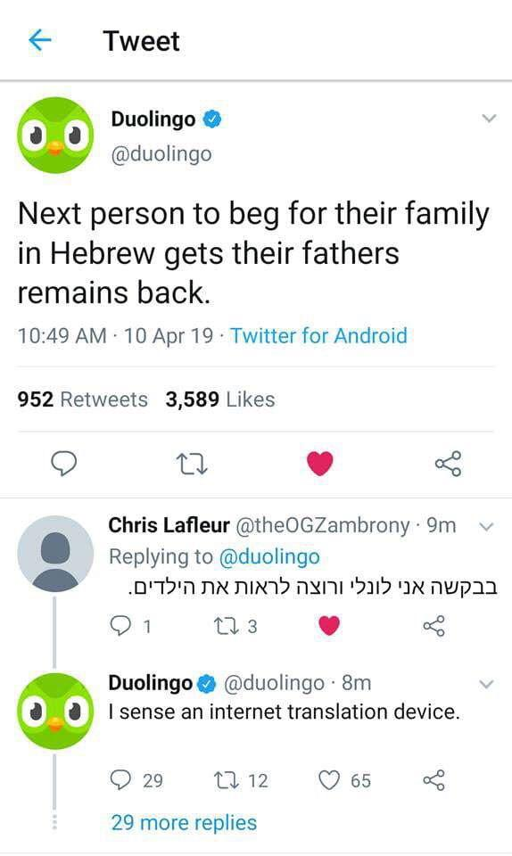 25 Duolingo Owl Memes That Threaten To Murder Your Family Creepy