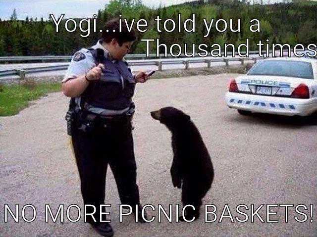 One pic-i-nic basket too far.
