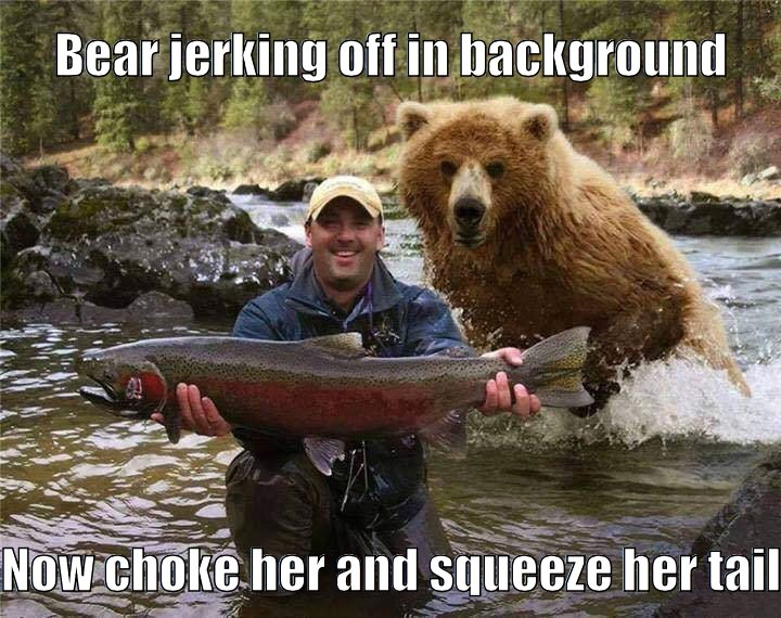 bear jerking off to fish