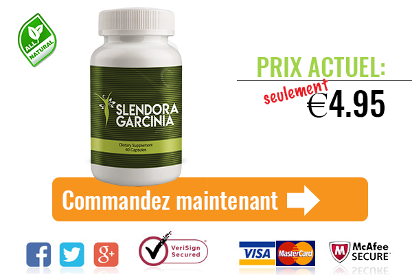 Slendora Garcinia is another weight reduction supplement that should be useful for your weight reduction endeavors!https://votofelforce.fr/slendora-garcinia/