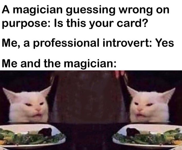 corona cat meme - A magician guessing wrong on purpose Is this your card? Me, a professional introvert Yes Me and the magician